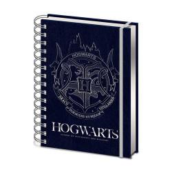 T-Shirt di Harry Potter nel Quidditch stile Nirvana - Celeste